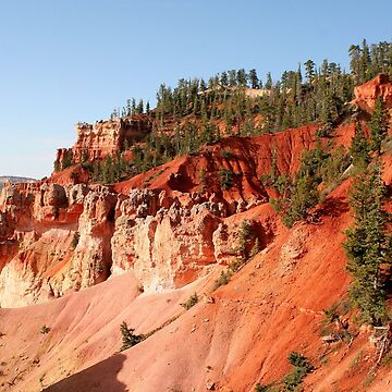 Bryce Canyon splendour by FranWest
