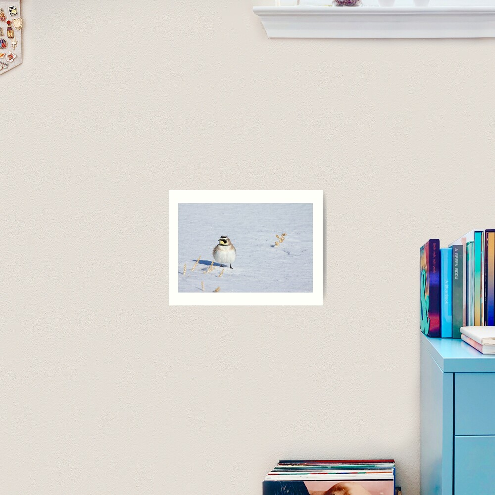 Mr. Horned Lark Art Print