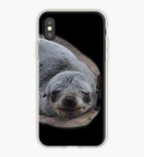 Kap-Pelz-Dichtungen, Namibia iPhone-Hülle & Cover