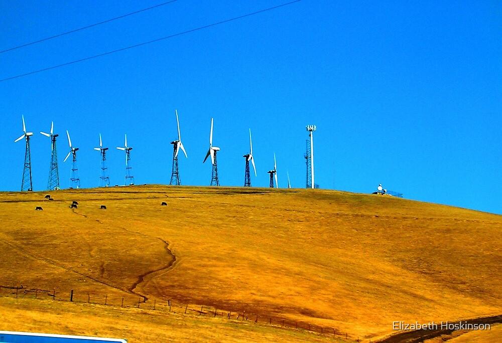 Wind Farms by Elizabeth Hoskinson