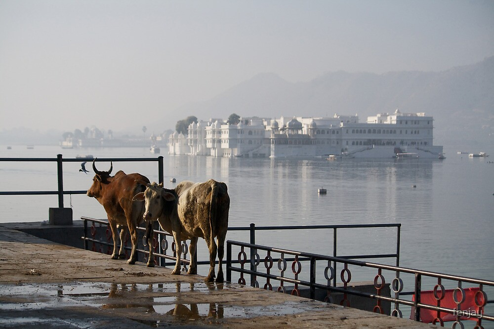 Fragments of Richness: An Indian Expose - admiring the view by fenjay