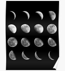 Lunar Cycle Poster