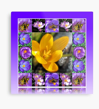 Bee, Crocus and Melting Snow Collage in Reflection Frame Metallbild