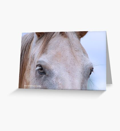 THROUGH THE EYES OF A HORSE.... ? Greeting Card