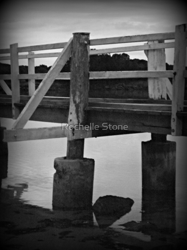 Oyster Shells and Feet Don't Mix by Rochelle Stone