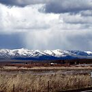 SNOW STORM over Eastern Oregon Peak, USA by Dave Sandersfeld