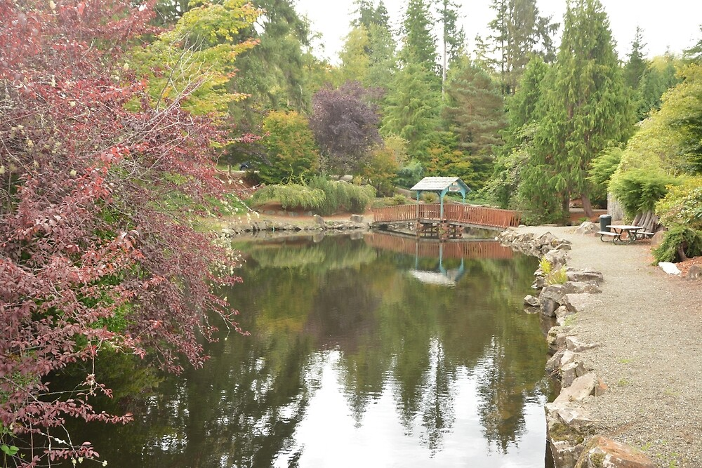The South Bend Water Garden and Pond by Bryan Spellman