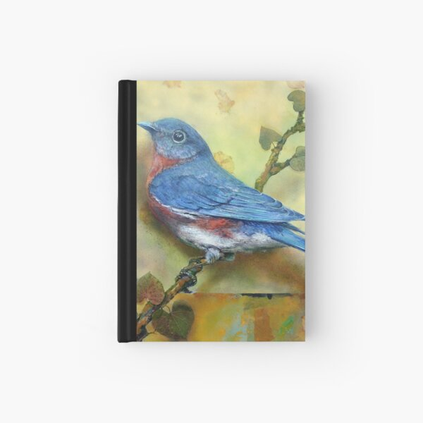 The Blue Boy Hardcover Journal