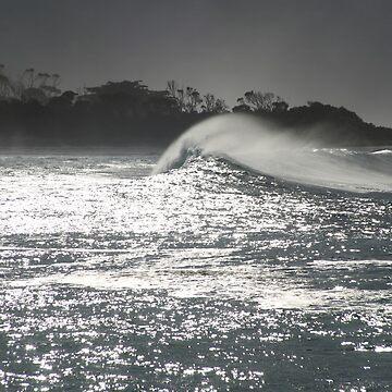 swell. redbill beach, bicheno, tasmania by bodhiimages