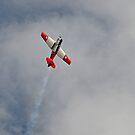 Harvard in flight by bazcelt