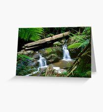 Olinda Falls - Dandenong Ranges Greeting Card