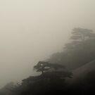 Huangshan Impression (7) by alternakive