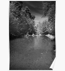 Lonely River Poster