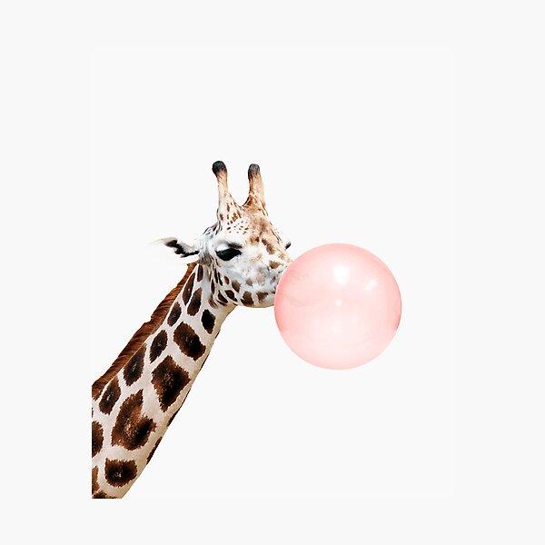 Giraffe print, Bubble gum, Nursery art, Giraffe wall art, Animal, Kids room, Modern art, Wall decor Photographic Print