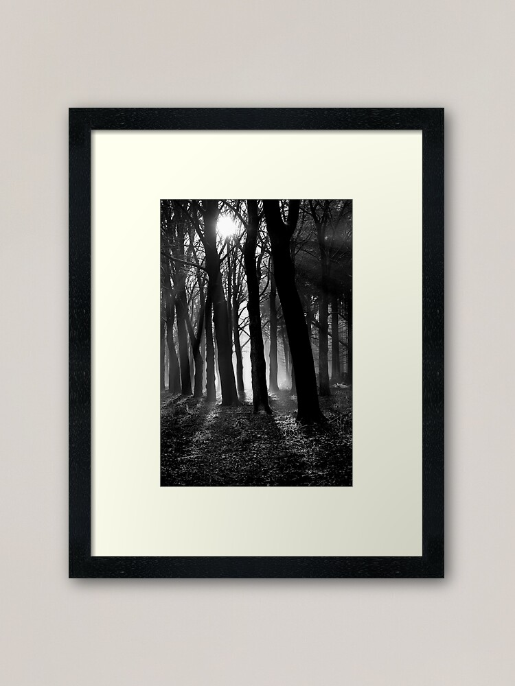 Alternate view of Light into the darkness Framed Art Print