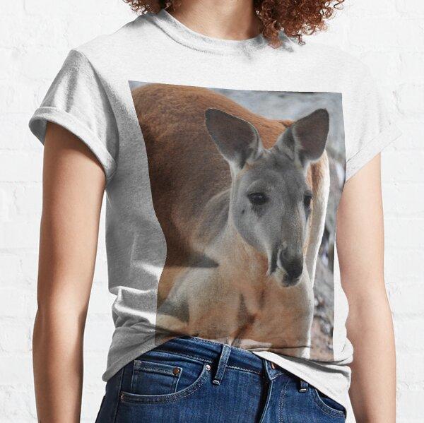 Red Kangaroo Classic T-Shirt