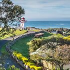 Lighthouse track by Roger Neal