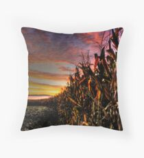 EARLY AUTUMN IN PENNSYLVANIA  Throw Pillow