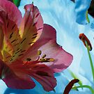 Lilies Greetings Card by DExPIX