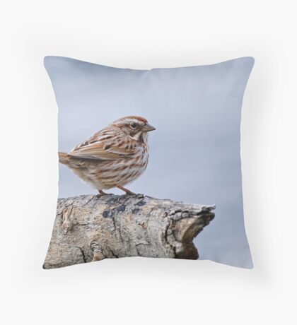 Song Sparrow - Ottawa, Ontario Throw Pillow