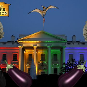 Extreme Makeover White House Edition by EcoFiendly