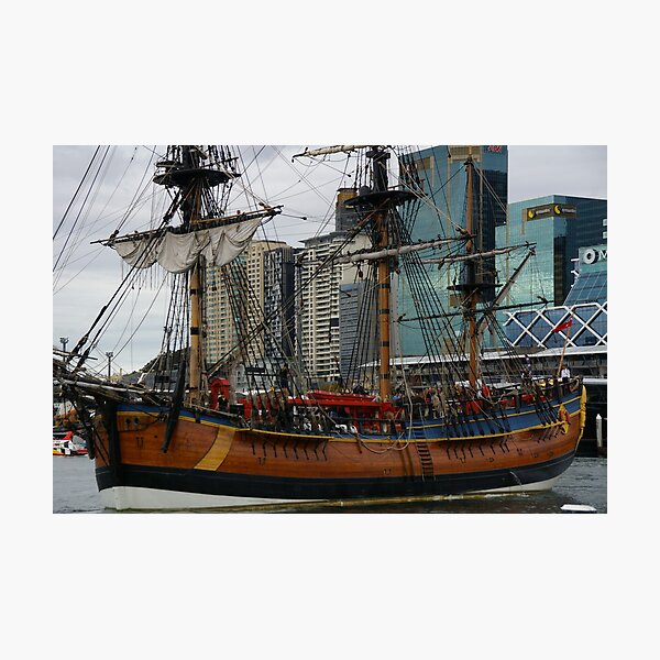 You Went Shopping At The Sails? Photographic Print