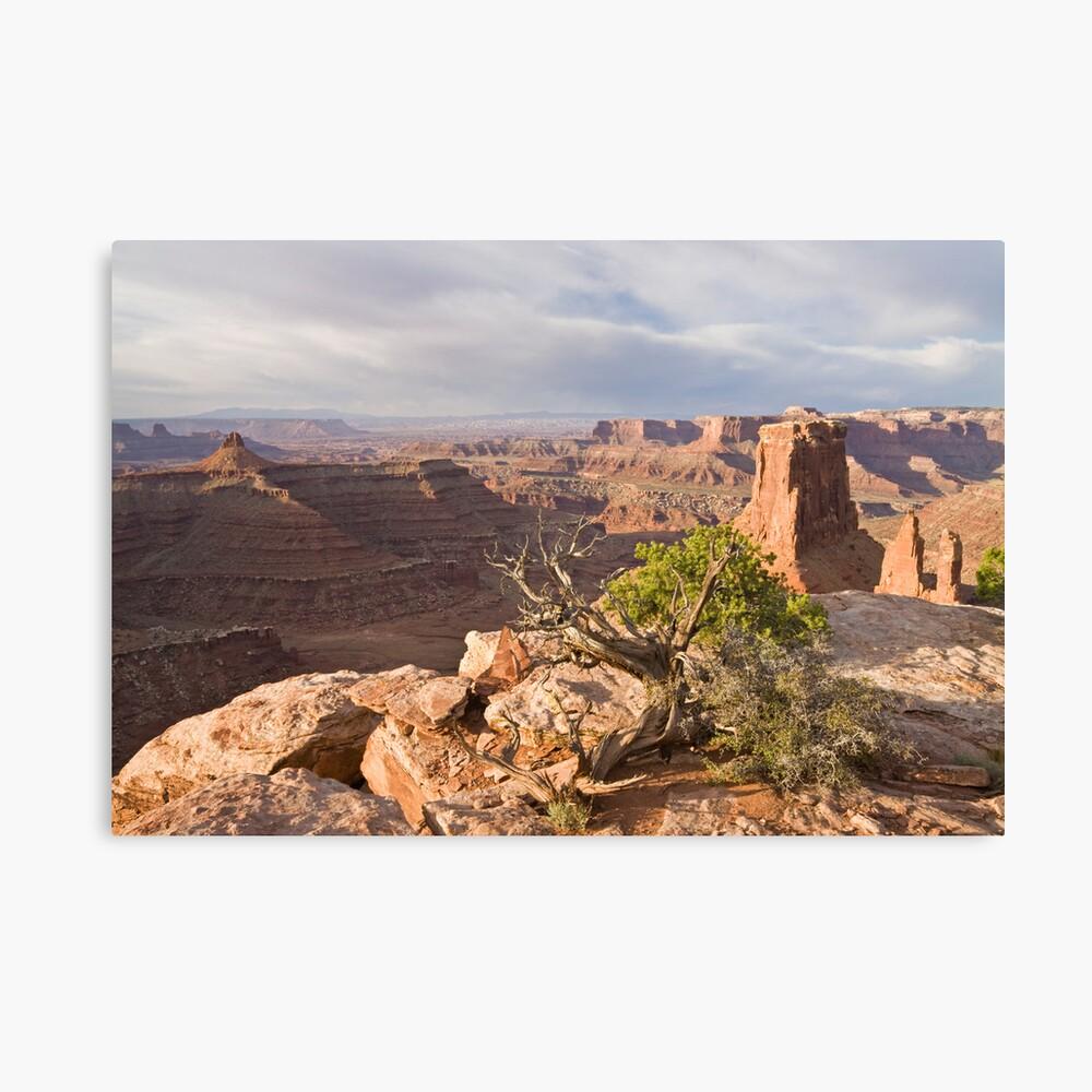 Morning Near Moab Canvas Print