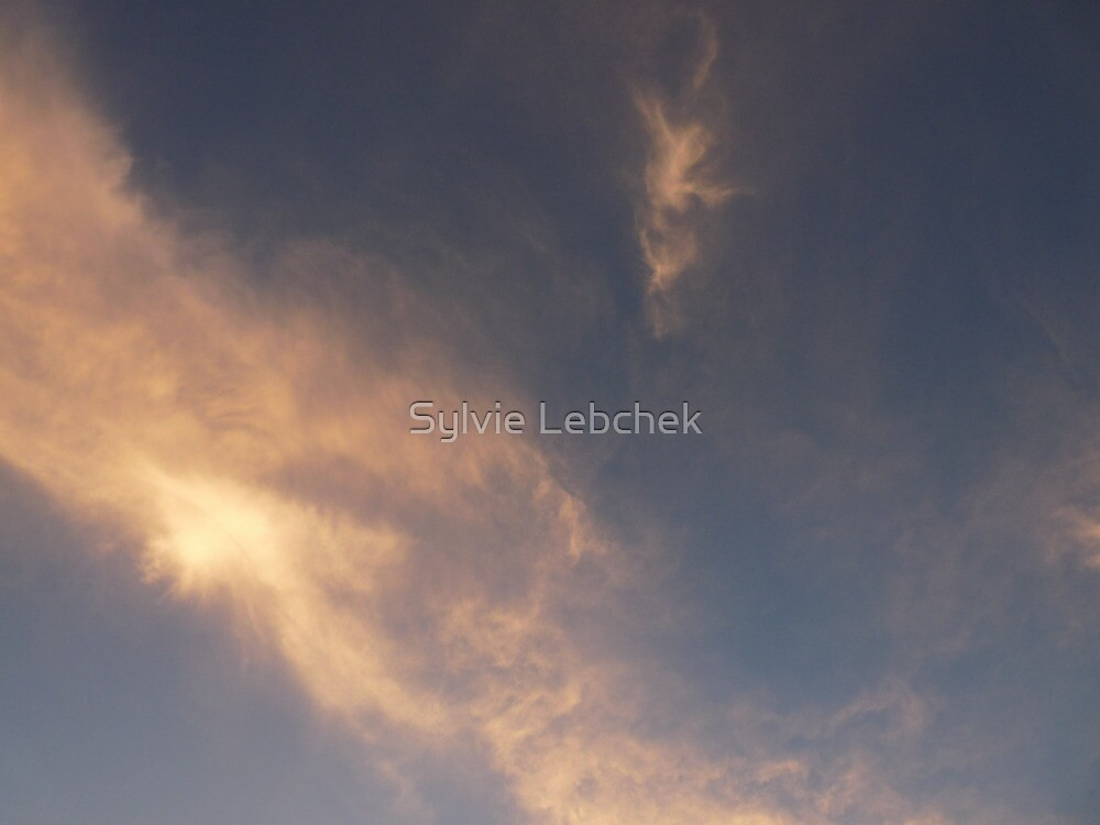 Pink Clouds by Sylvie Lebchek