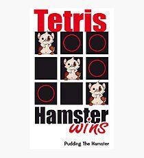 Pudding The Hamster - Tetris Photographic Print