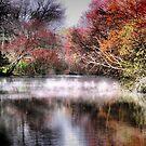 Fog On The Creek by Sharon A. Henson