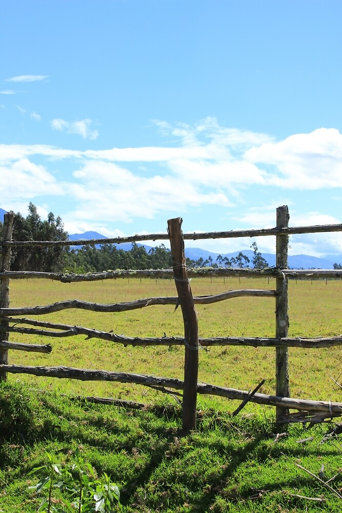 Fence and a Pasture by rhamm