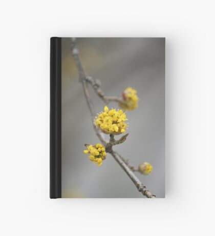 Cup o' gold Hardcover Journal