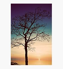 Rising on the Sound Photographic Print