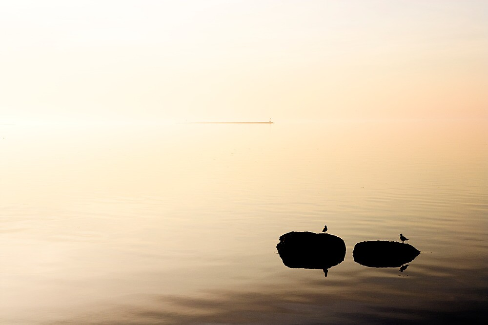 Sound Awakening  by Tim Mannle