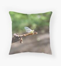 Greenfly on a twig. Throw Pillow