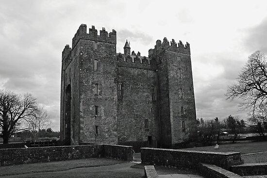 Bunratty Castle by Martina Fagan