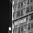 Window cleaners by Tony  Glover