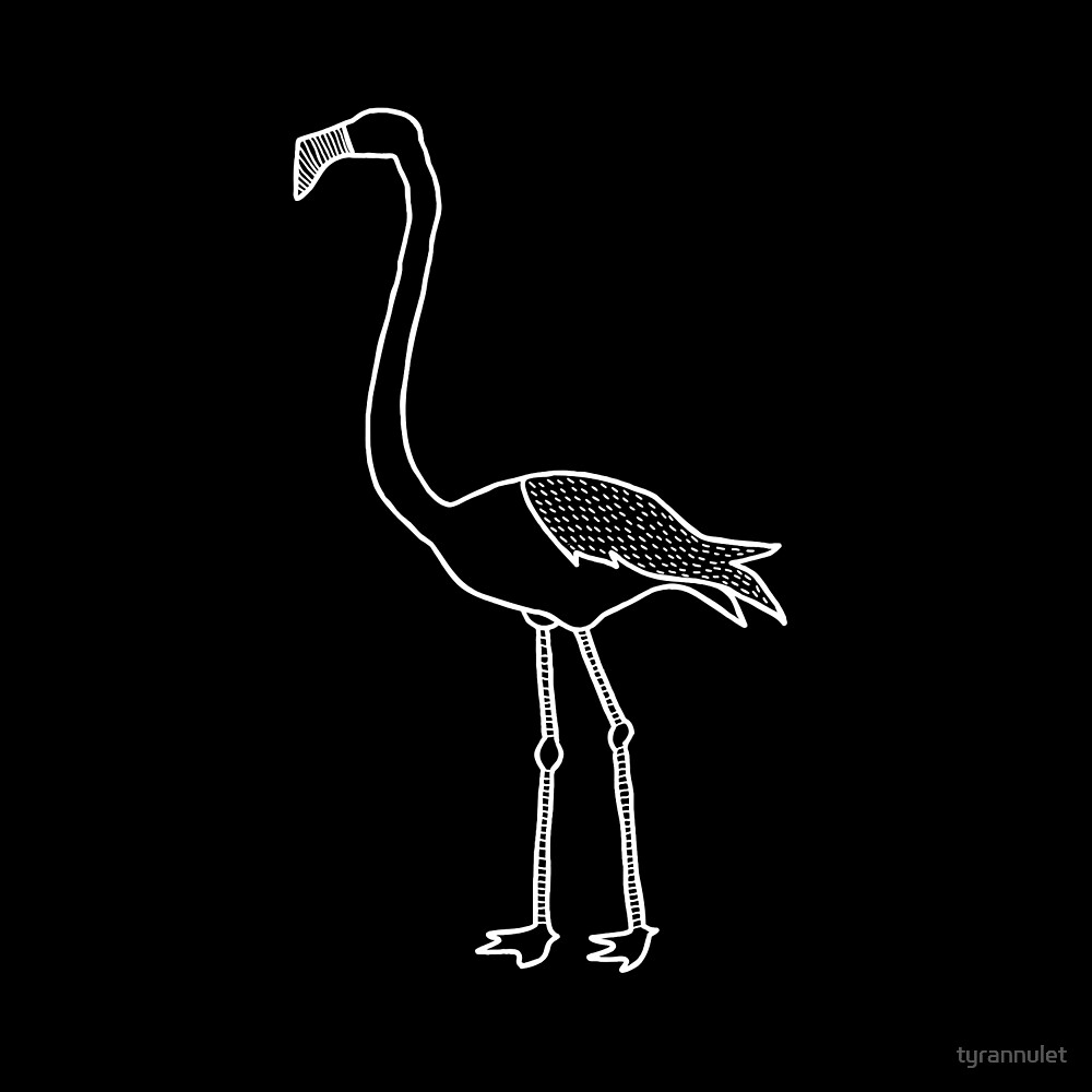 American Flamingo (White on Black) by tyrannulet
