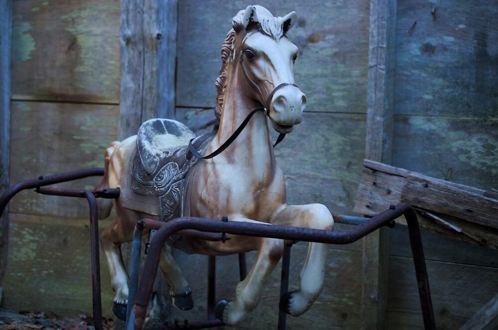 Rocking horse by hannahduston