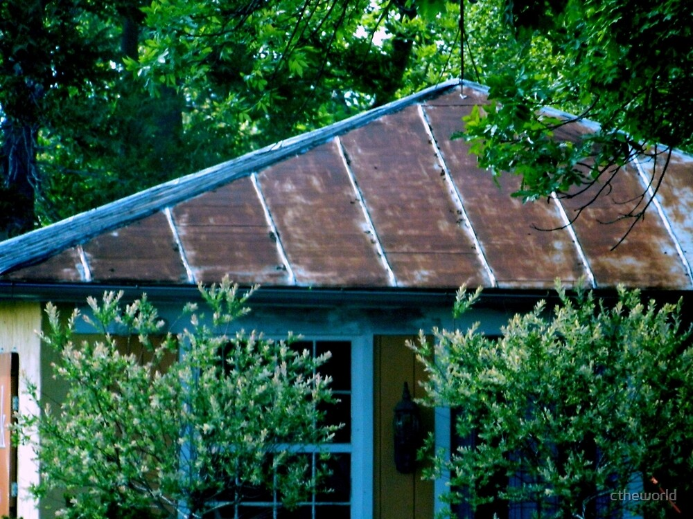 Old-Fashioned Tin Roof by ctheworld