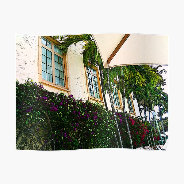 Purple and Red Bougainvillea Art Poster