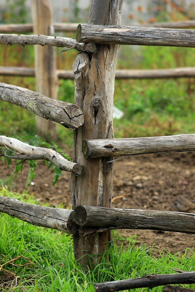 Wooden Fence on a Farm by rhamm