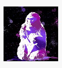 The Snow Monkey Photographic Print