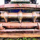 This Old Ford by Deborah Downes