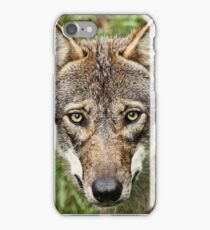 Canis Lupus iPhone Case/Skin