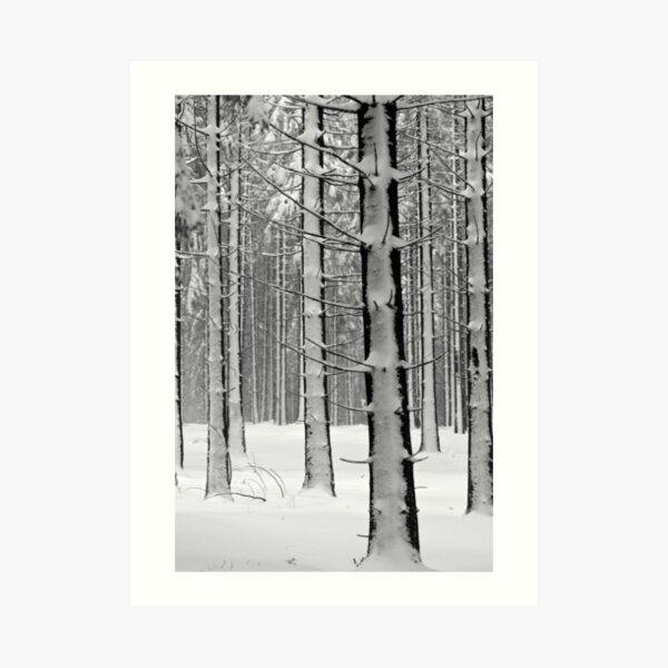 Forêt en hiver Impression artistique