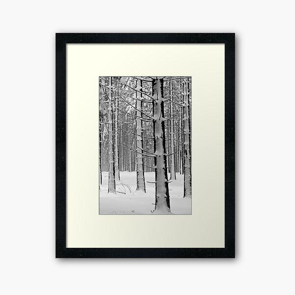 Forêt en hiver Impression encadrée