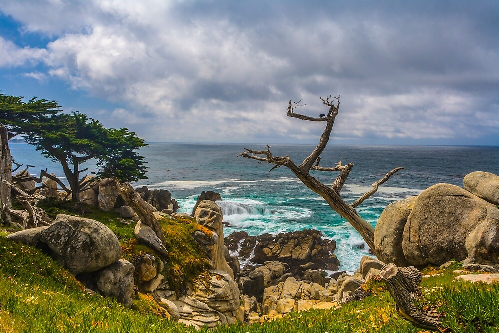 Pescador Beach 17 Mile Drive Monterey California  by photosbyflood