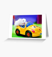 driving hamster Greeting Card
