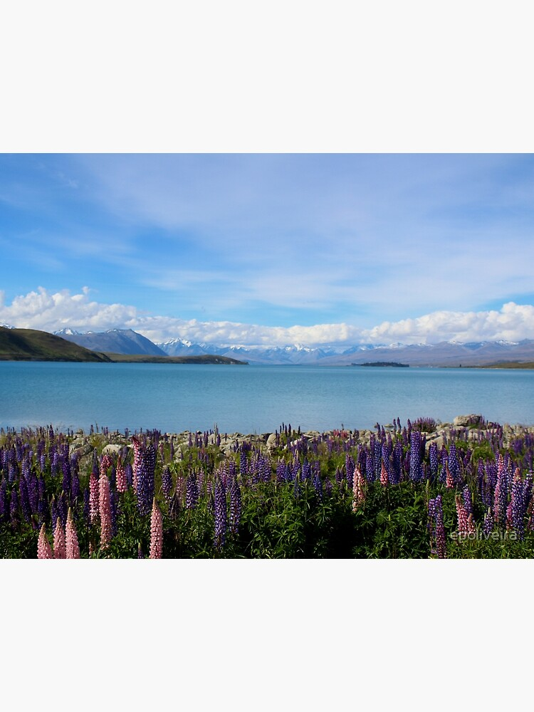 Lake Tekapo New Zealand Nature Photography by epoliveira